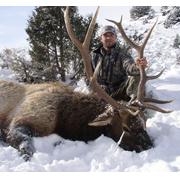 Elk Hunting in Montana – Rates for Guided Montana Elk Hunts