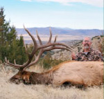 Sunday Creek Outfitters Private Ranch Rifle Elk Hunts