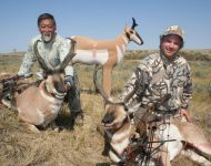 Double Decker  Decoy Archery  Montana Antelope