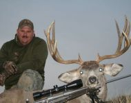 Awesome Wide 5X5 Montana Mule Deer